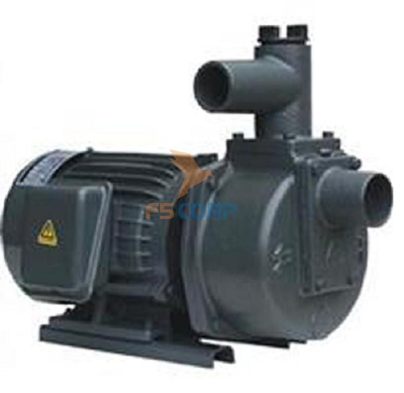 Máy bơm nước tự hút đầu gang HSP250-11.5 20 2HP