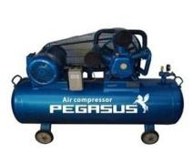Máy nén khí dây đai Pegasus TM-W-0.36/8-330L (220V)
