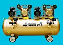 Máy nén khí dây đai 2 đầu nén, 2 moto Pegasus TM-V-0.25/8x2-230L