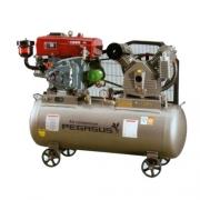 Máy nén khí chạy bằng dầu Diesel Pegasus TM-V-1.05/12.5-500L