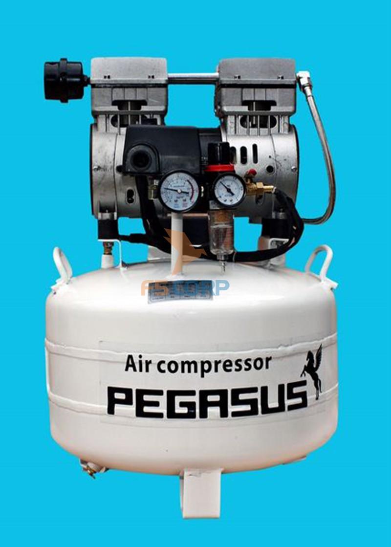 Máy nén khí không dầu giảm âm Pegasus TM - OF750 - 40L