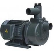 Máy bơm nước tự hút đầu gang HSP250-11.5 26 2HP