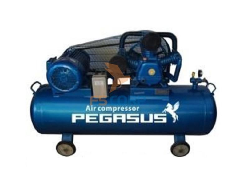 Máy nén khí dây đai Pegasus TM-W-0.67/8-330L (380V)