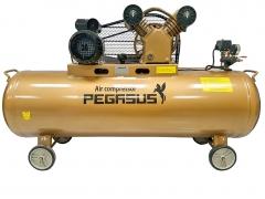Máy nén khí dây đai Pegasus TM-V-0.25/8-120L