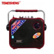 Loa trợ giảng Temeisheng A83